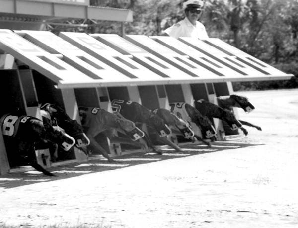 February-1976-Derby-Lane-St.-Pete-PC.-Karl-Holland
