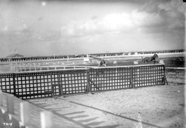greyhounds-jumping-hurdle-at-hialeah-track.-PC.-W.A.-Fishbaugh