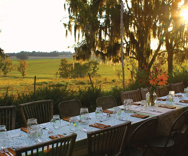 A dreamy backdrop for a meal at Swallowtail Farm; Photography by Onna Meyer