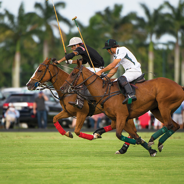 Sunday 3 p.m. high-goal polo action at the International Polo Club in Wellington; Photography by United States Polo Association