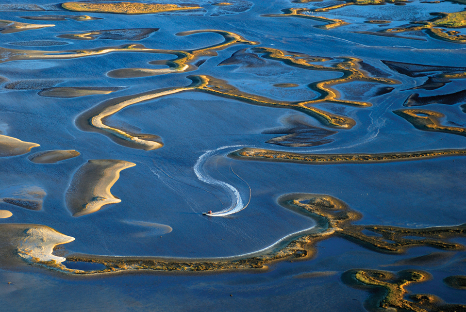 Exposed oyster and clam beds near Cedar Key; Photography by Carlton Ward Jr.