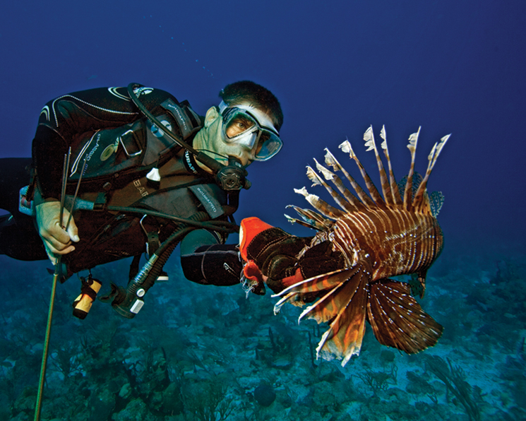A Lionfish Derby diver at John Pennekamp Coral Reef State Park; photo courtesy of REEF