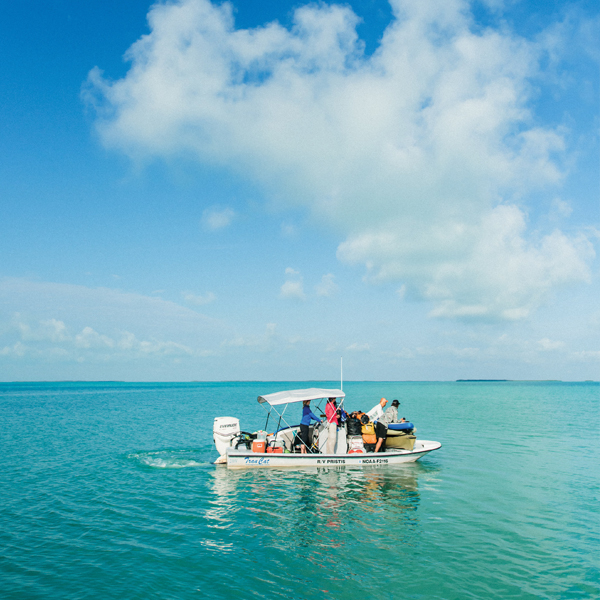 Loaded with gear on the sawfish expedition in Florida Bay; photography by Desirée Gardner
