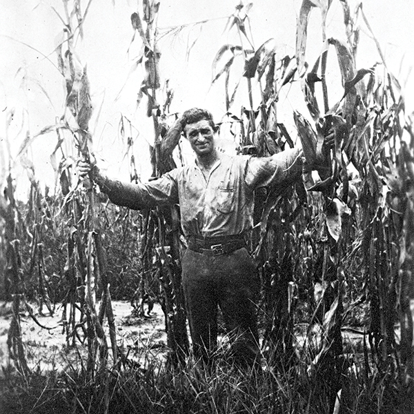 Moses Levy, standing in a corn field, wanted to create an agrarian utopia for European Jewish refugees in Florida. Photography by State Archives of Florida
