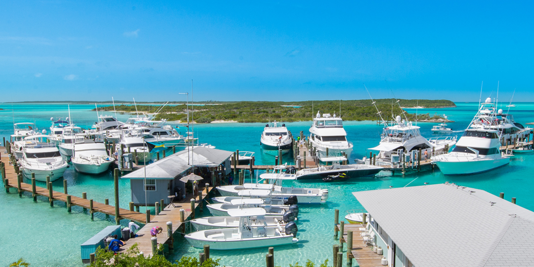 Islands in the Stream: Insider's Guide to the Bahamas
