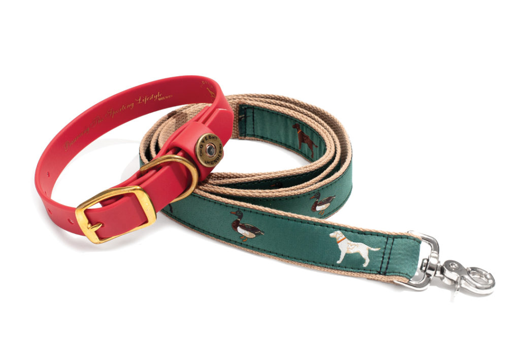 OVER UNDER WATER DOG COLLAR IN BLAZE ORANGE AND THE GANG'S ALL HERE RIBBON LEASH