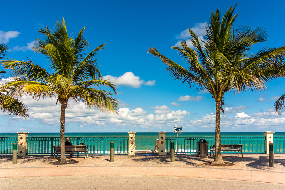 Beach shot with palm trees and benches.