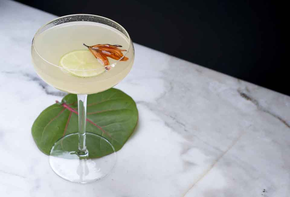 Image of a drink with lemon and flower in it resting on a leaf and marble counter top.
