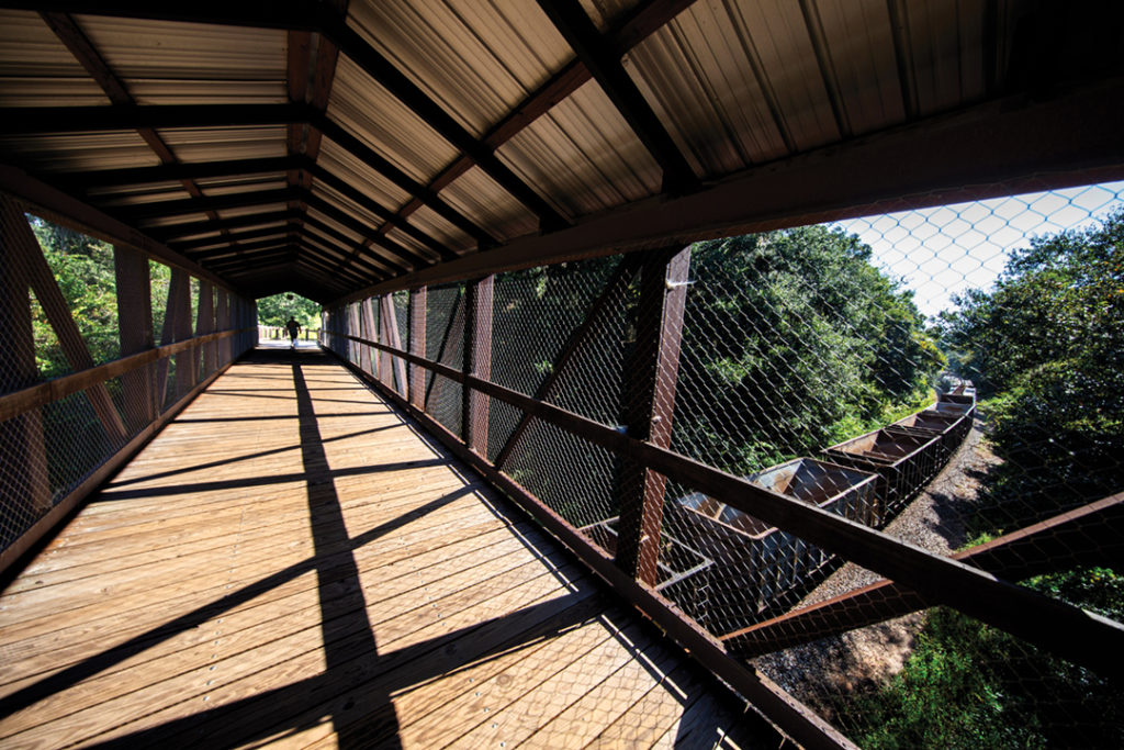The Florida Gulf and Atlantic Railroad train passes under the Lafayette Heritage Trail Park Canopy Walkway Bridge