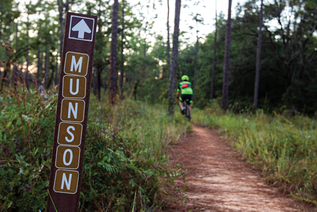 The Munson Hills Mountain Bike Trail cuts through the Apalachicola National Forest