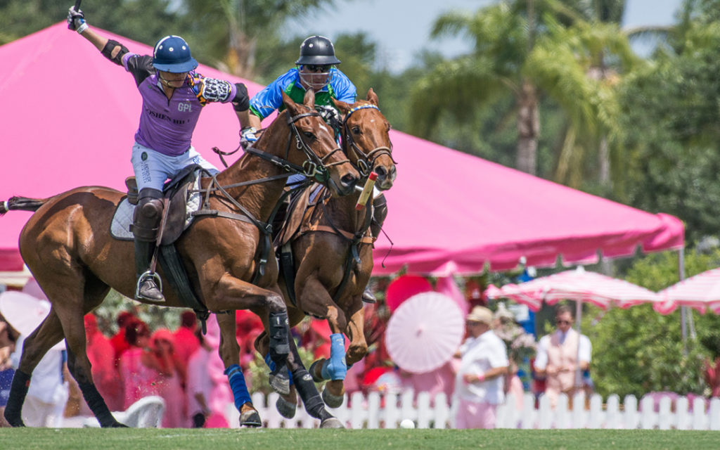gay polo tournament players in chase