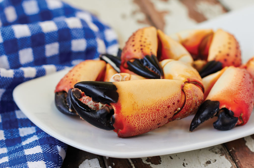 stone crab plated