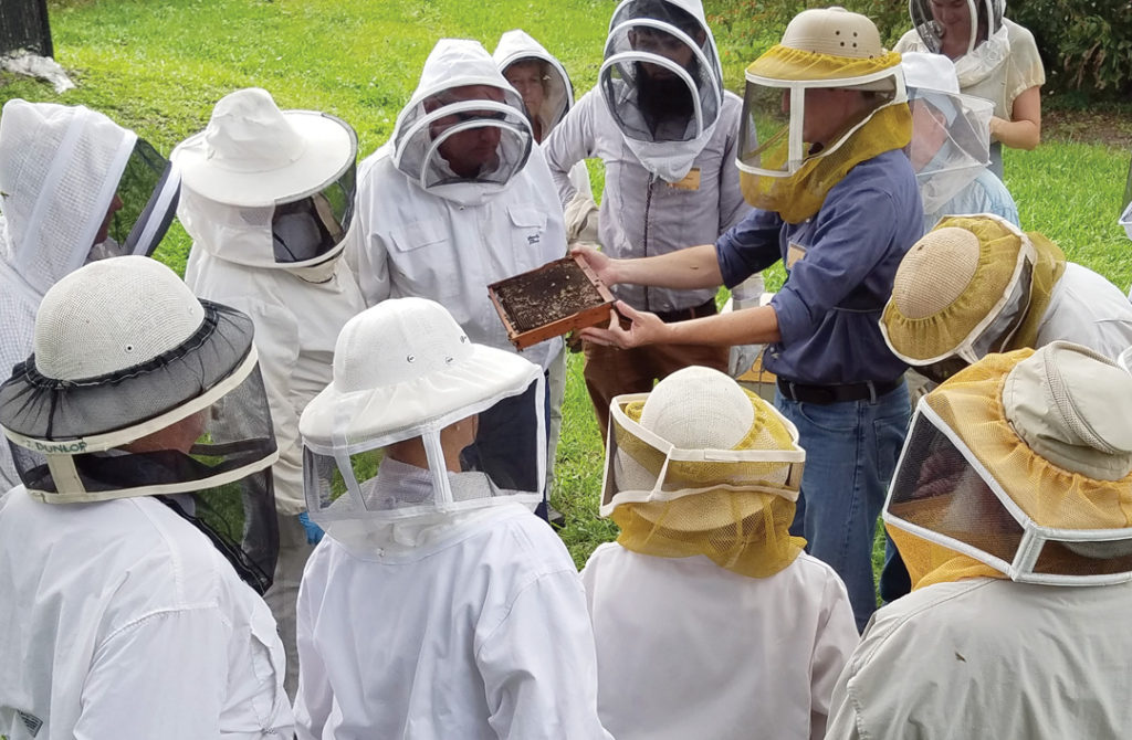 Jamie Ellis hold out bees to beekeepers
