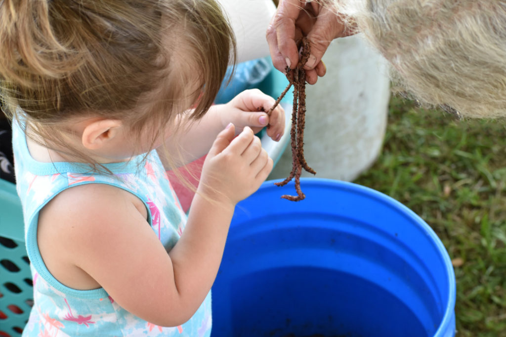 Little girl holding worms