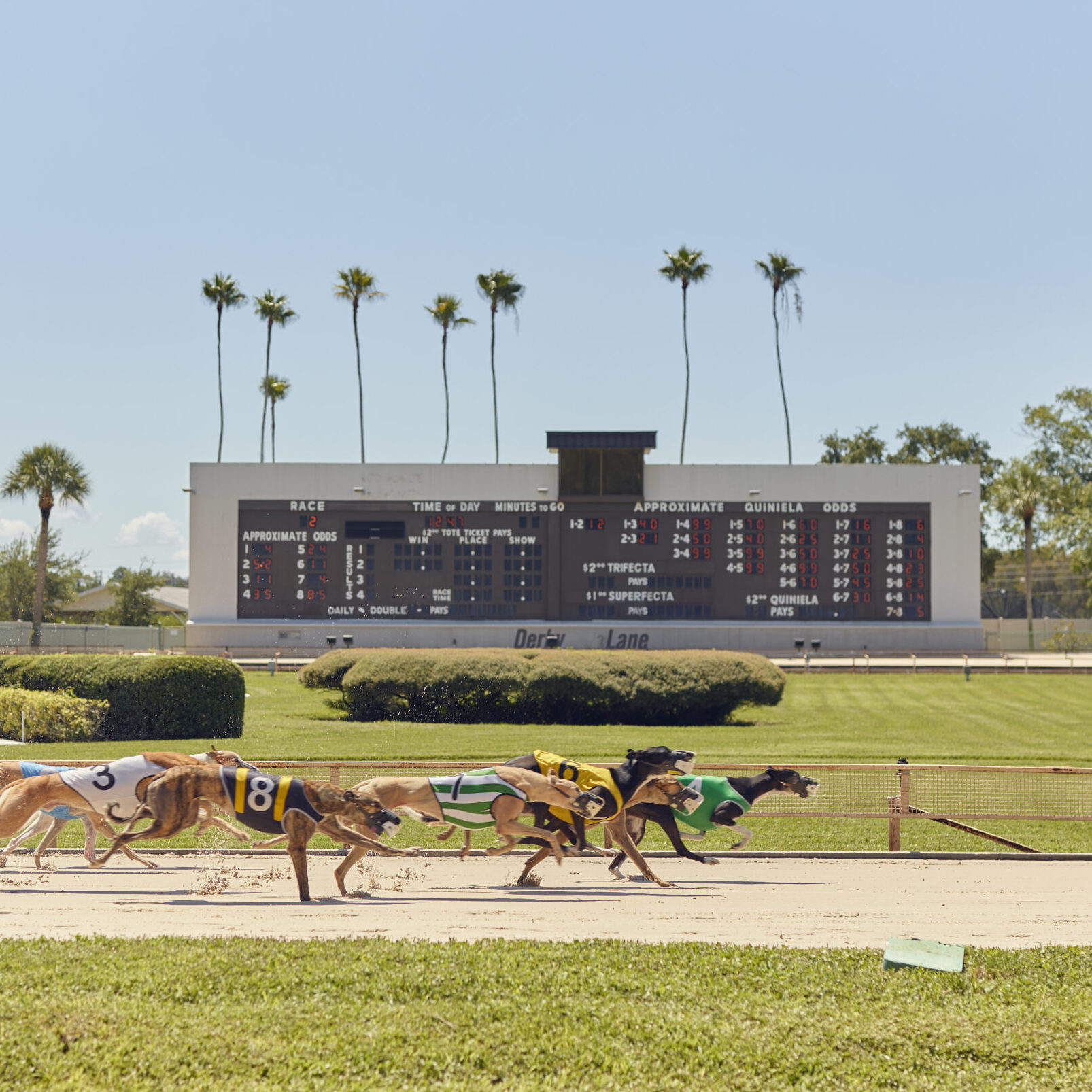 A Final Lap with Richard Winning, the Godfather of Greyhound Racing