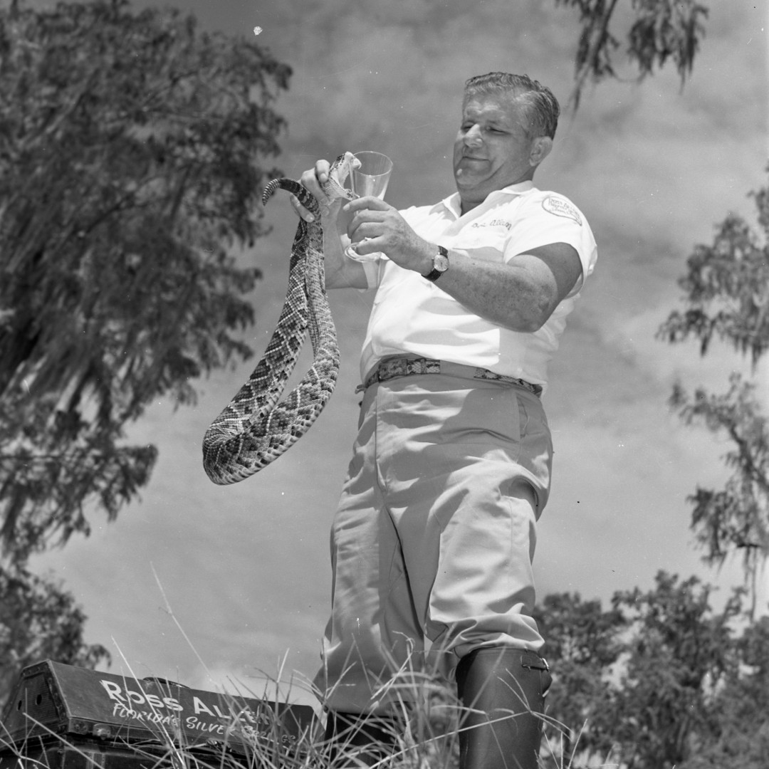 Ross Allen: Florida's Own Reptile Wrangler | Flamingo Magazine