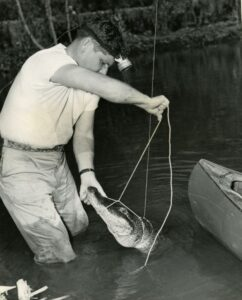 Ross Allen holds an alligator's snout as he seems to tie a rope around it. He is in the water and wears a headlamp.