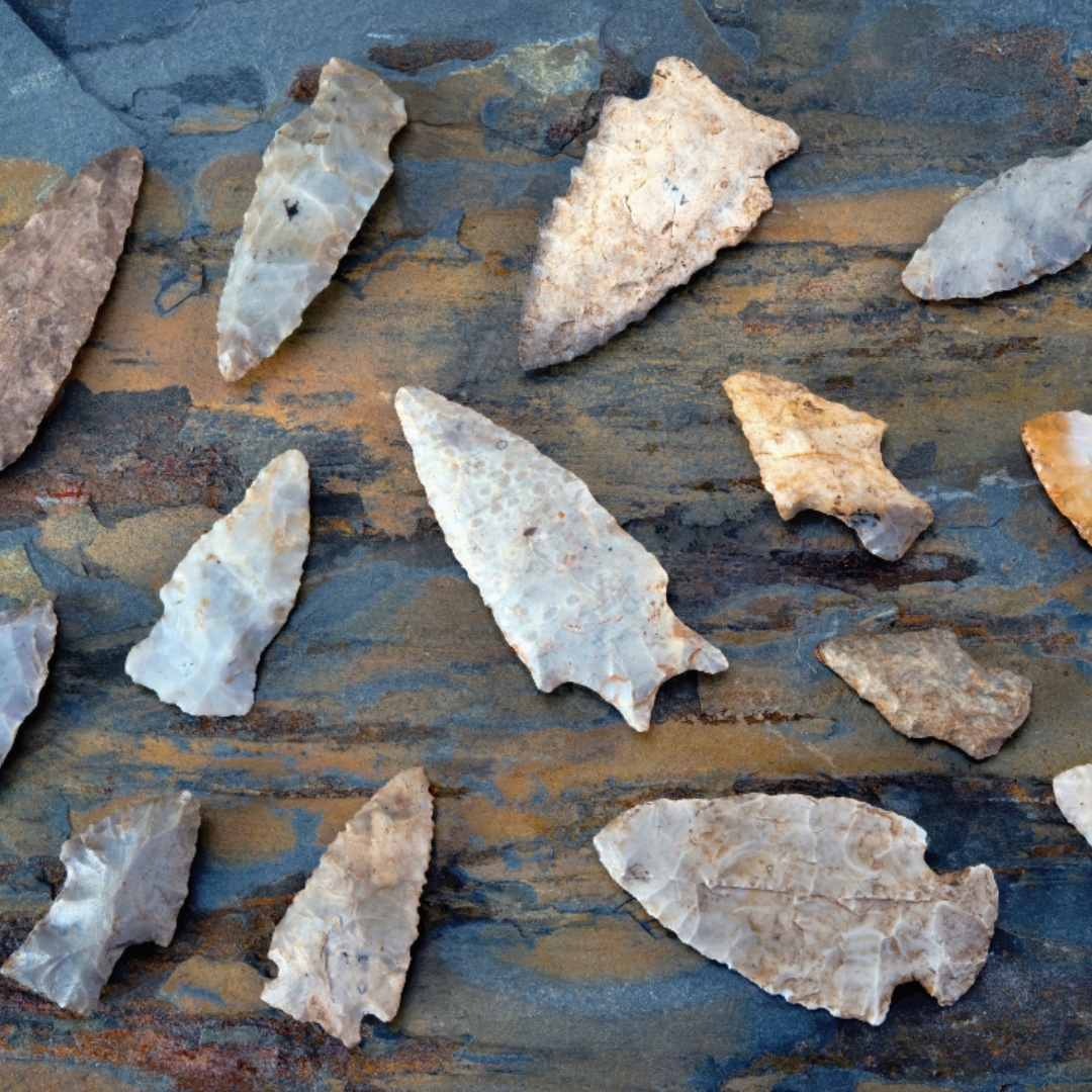 Arrowheads of various sizes rest on a natural surface.